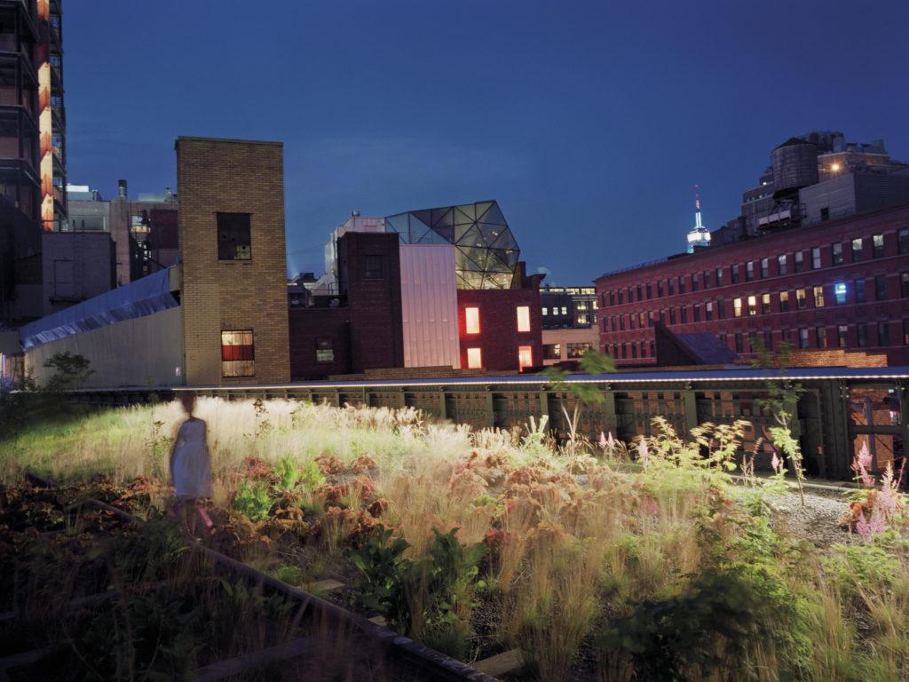 Girl on the Highline - New York, New York