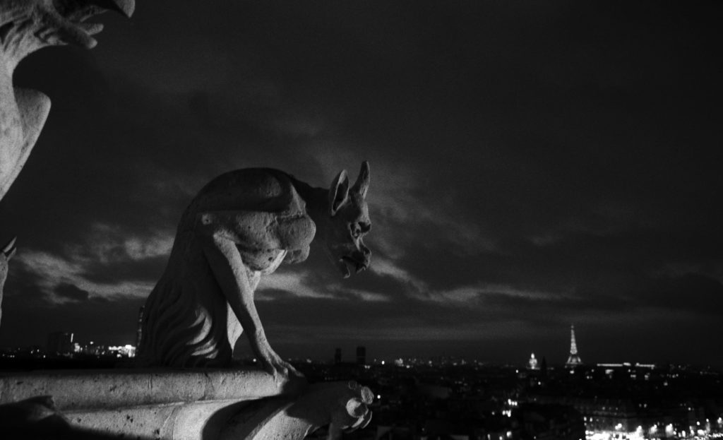 Gargoyles, Roof of Notre Dame Cathedral, Paris, France