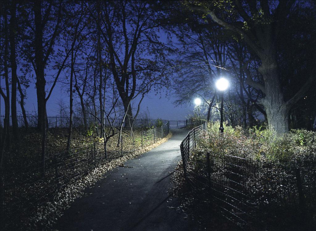 Central Park Path - New York, New York